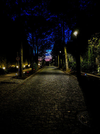 Illuminated street amidst trees at night
