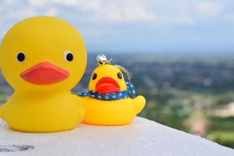 Close-up of rubber ducks on retaining wall against sky