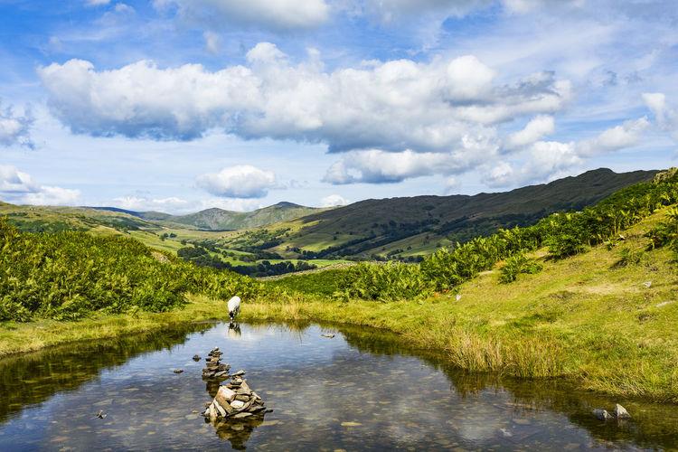 Idyllic rural scene in uk