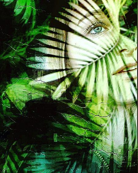 👀 First Eyeem Photo Jungle Vert Regards Forest Foret Montage