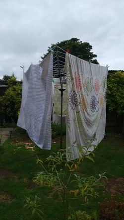 Drying Laundry Clothesline Hanging Clothing Front Or Back Yard Textile Sky Cloud - Sky Grass No People Day Outdoors