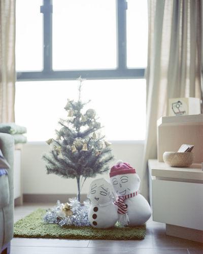6x7 Christmas Christmas Tree Enjoying Life Eye4photography  EyeEm EyeEm Best Shots EyeEm Gallery EyeEmBestPics Home Home Interior Home Sweet Home Kodak Medium Format Pentax PENTAX67 Plant Portra160 Filmisnotdead Natural Light Snowman Window ちびまる子ちゃん 小丸子 Always Be Cozy