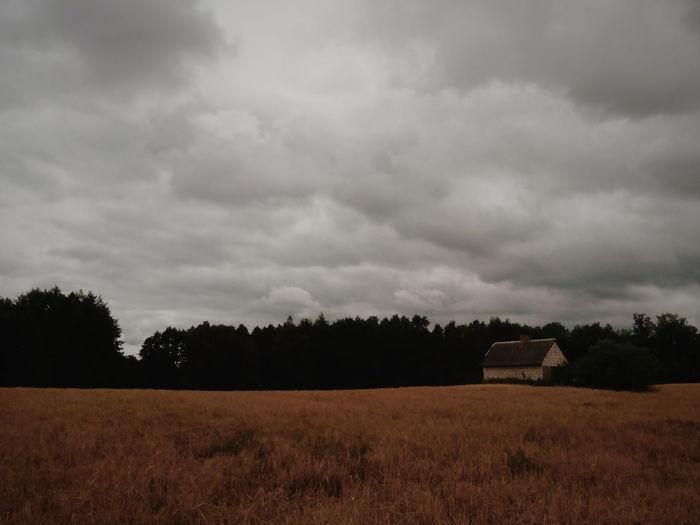 Fields. Landscape Cloud - Sky Storm Cloud Beauty In Nature Nature Outdoors Summer VSCO EyeEm Best Edits EyeEm Best Shots