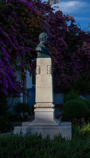 View of statue against blue sky and plants
