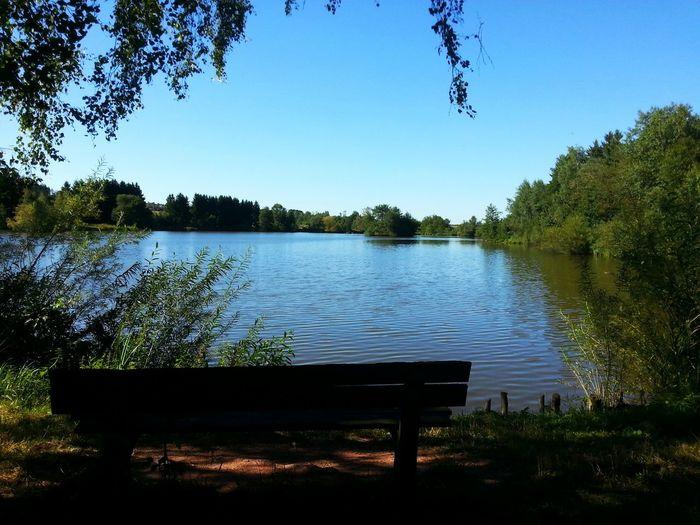 Lake View Bench
