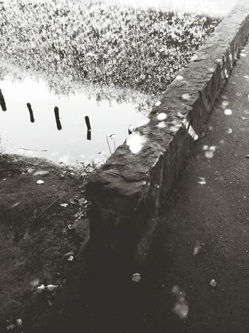 Light & water. Capa Filter Blackandwhite Park Urban