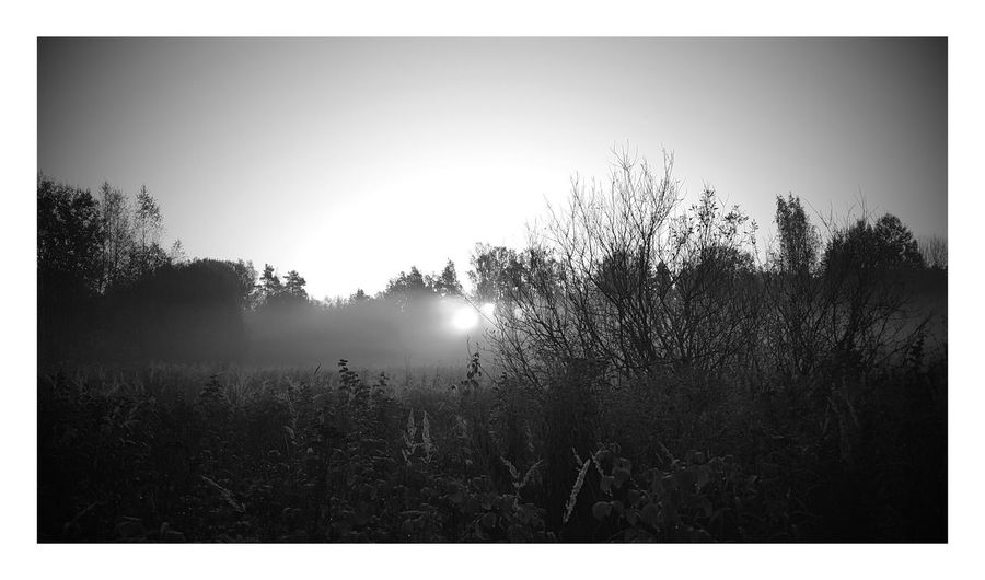 Capture The Moment Morning Light Nature Landscape Winteriscoming Finland Turku Kaarina Taking Photos Check This Out