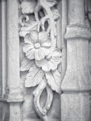 Tribune Tower Details Chicago Beautiful Architecture Architecture_collection Historic Historical Building Flower 🌺 Close-up Magnificent Mile Urban Art Appreciate The Little Things In Life Love My City Explore Urbanphotography Urban Exploration Historic Site Sculpture EyeEmBestPics EyeEm Best Shots - Black + White IPhoneography