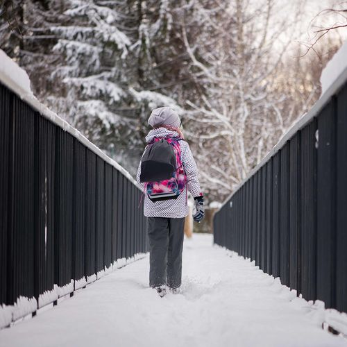 Girl Student Female Little Wearing Winter Clothes Casual Hat Backpack Walk Walking Wooden Bridge Footbridge Pathway Snow Color Covered Road Teenager Hike Adult Young Minor Back School People Behind Highway One person Beautiful Nature Tourist Traveler Leisure Healthy Life Lifestyle Adventure Rear View Colorful Image Cold Temperature Warm Clothing Real People Leisure Activity Outdoors Day