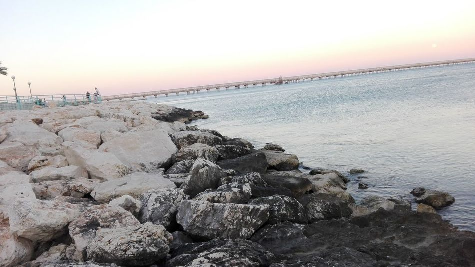 Sea Beach Sunset Sky Beauty In Nature Nature Rock - Object Large Group Of Animals Water Sand Outdoors Horizon Over Water No People Day Sunset_collection Tramonto Porto Mare Sea And Sky Scogli Manfredonia Puglia Italy Italia Beauty In Nature