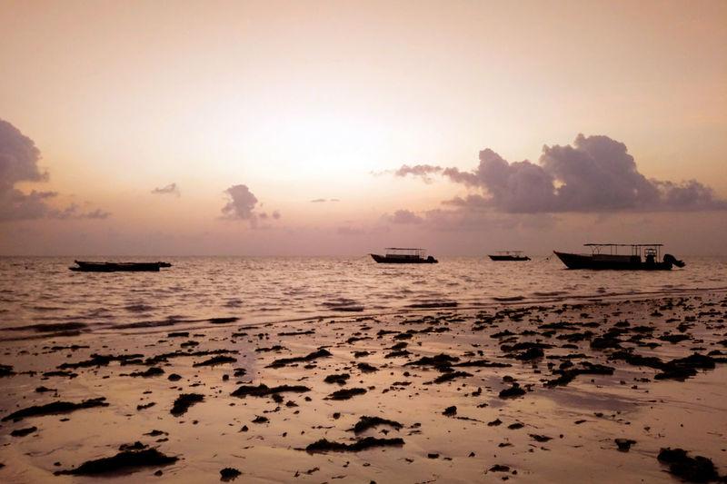 Sunrise over Paje Zanzibar Water Sea Sky Beach Sunset Sunrise Sun Reflection Ship Boat No People Cloud - Sky Nature Tranquility Chill Calm Ocean