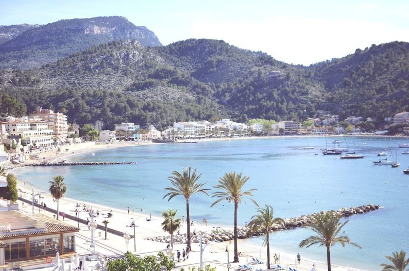 Port de Sóller Tree Water Mountain Palm Tree Sea Beach Nautical Vessel Sand Pinaceae Tourist Resort Coastline Marina Bay Of Water Headland Bay Island