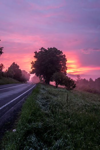 Road amidst trees on field against sky during sunset