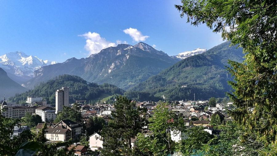 postcard from interlaken, switzerland cityscapes Morning Baellehoechscht Switzerland Eye4photography  Interlaken Berner Oberland Bernese Oberland Tree Mountain Forest Pinaceae Pine Tree City Sky Mountain Range Landscape Mountain Ridge Snow Covered Snowcapped Mountain Peak