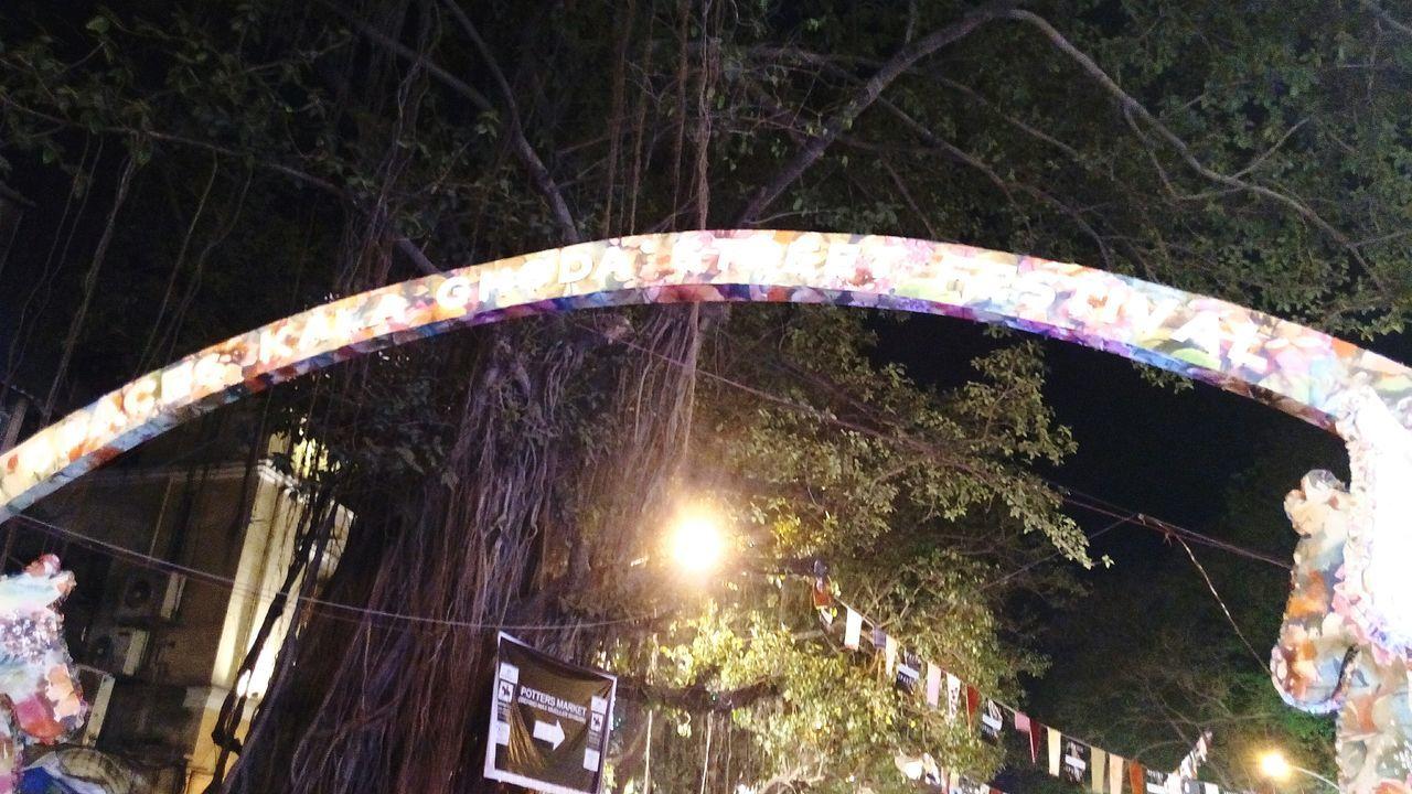 arts culture and entertainment, amusement park, outdoors, fun, no people, motion, night, amusement park ride, tree, nature