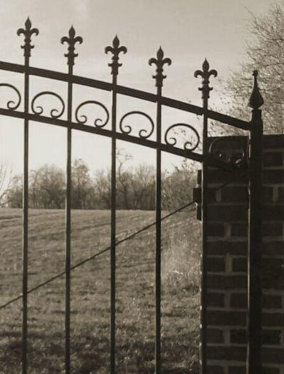 Wrought Iron Wrought Iron Gates Wrought Iron Design Iron And Stone Fluer De Lis Peaceful Eerily Beautiful Winter Trees Gate Sepiatone Estate Grounds Estate Virginia♥