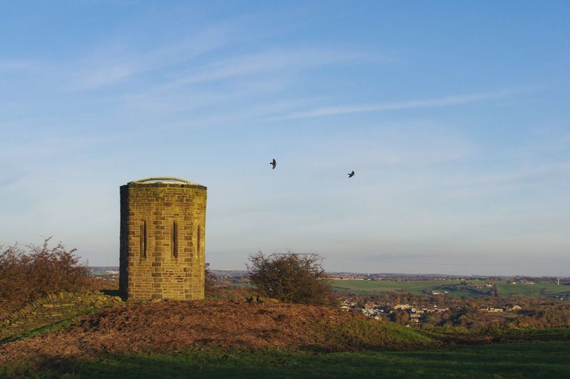 Raven Ravens Flying Raven Clouds Blue Sky Halifax POV Shibden Landscape Light And Shadow Twilight Tower Built Structure Business Finance And Industry Building Exterior Sky Architecture Outdoors Flying No People Day Bird Shades Of Winter