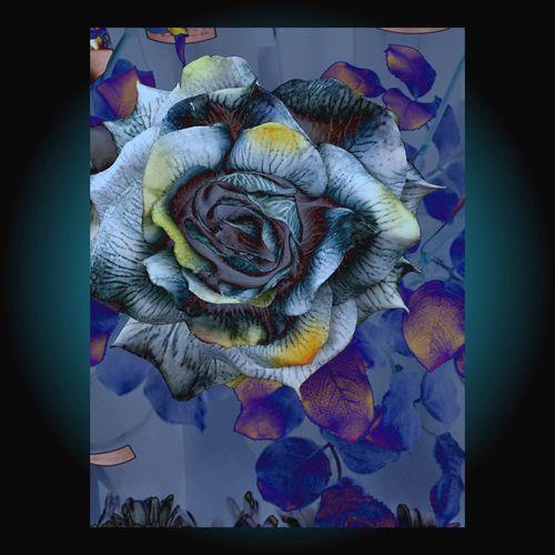 Artificial Beauty 3 Nature Creative Beautiful Eye Em Nature Lover Flower Flowers LPhoneography