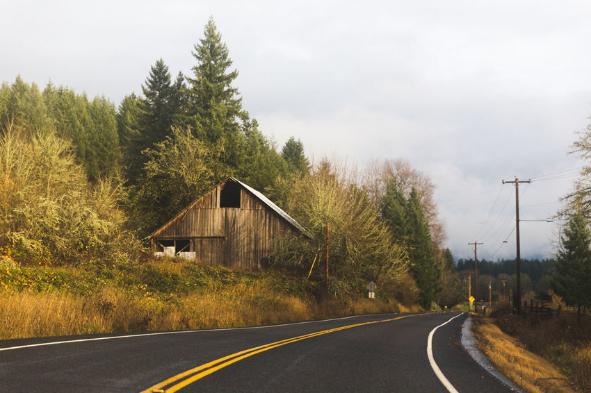 Scenic rural landscape with abandoned barn building near road. Vader, Washington, USA. Country Country Living Country Road Countryside Glamour Pacific Northwest  Rural Rural America Rural Decay Rural Scenes RuralTreasures  Vader, Washington Washington Washington State Country House Country Life Country Side Countrylife Countryside Countryside Landscape Countryside Life Countryside Uk Rural Exploration Rural Landscape Rural Life Rural Scene