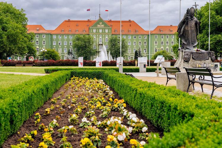 View of flowering plants in garden against buildings