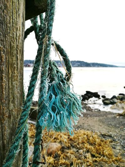 Sea Water Sky Nature Horizon Over Water Beach Beauty In Nature Outdoors Day No People Close-up Ropes And Lines Detailphotography Wintertime Peaceful View Peace And QuietLife In Motion Lifeisbeautiful Tranquility Norway🇳🇴 EyeEmNewHere