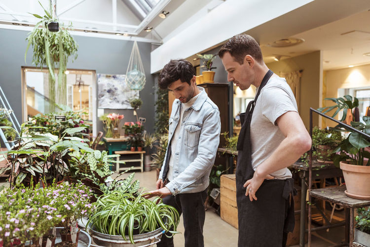 People looking at potted plants