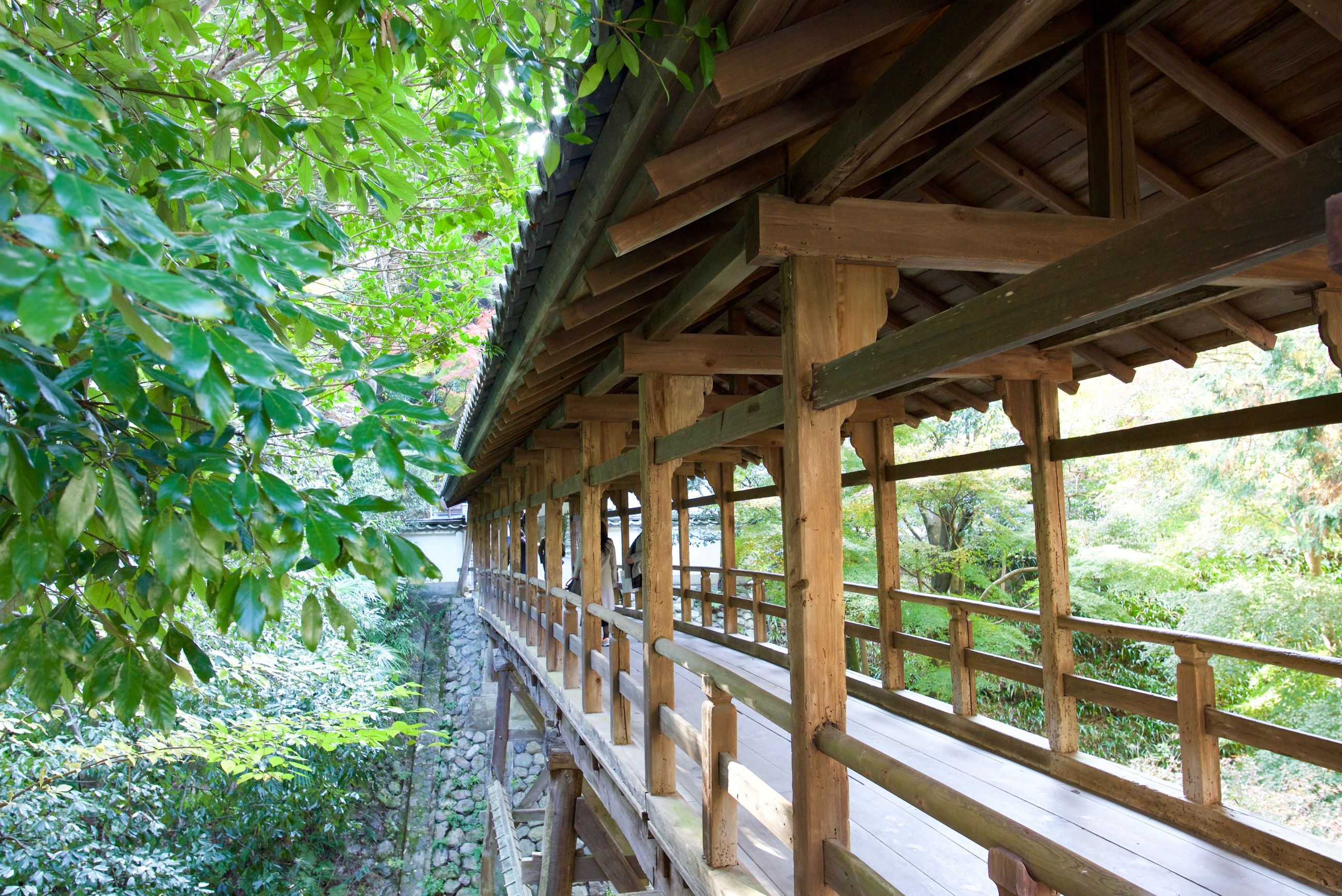 architecture, built structure, tree, wood - material, plant, day, no people, nature, outdoors, railing, forest, land, building exterior, growth, gazebo, sunlight, roof, green color, architectural column