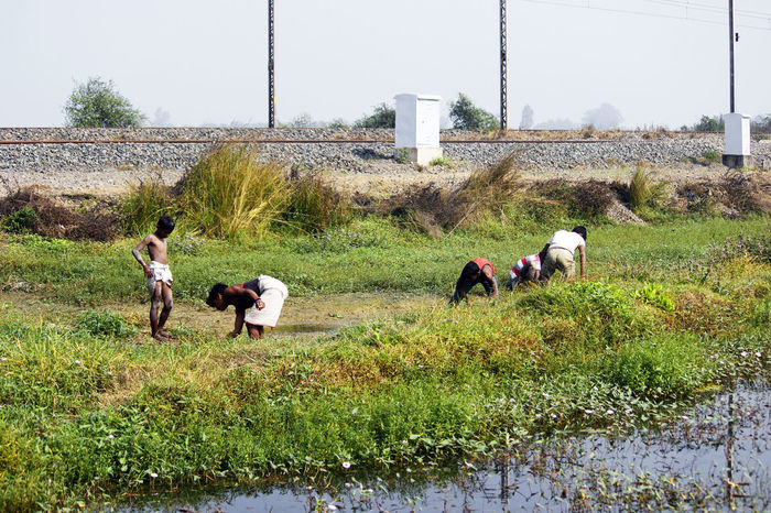 fishing for survive. Fishing Pond Indian Village Indian Village Life Rural Rural Scenes Rural Lifestyle Field Fisherman Fishermen Fishing Fishing Area Fishing Time Fooding Grass Hunting Fish Indian Villager Outdoors Real People Rural Life Rural Scene Sky Togetherness Village Life Water