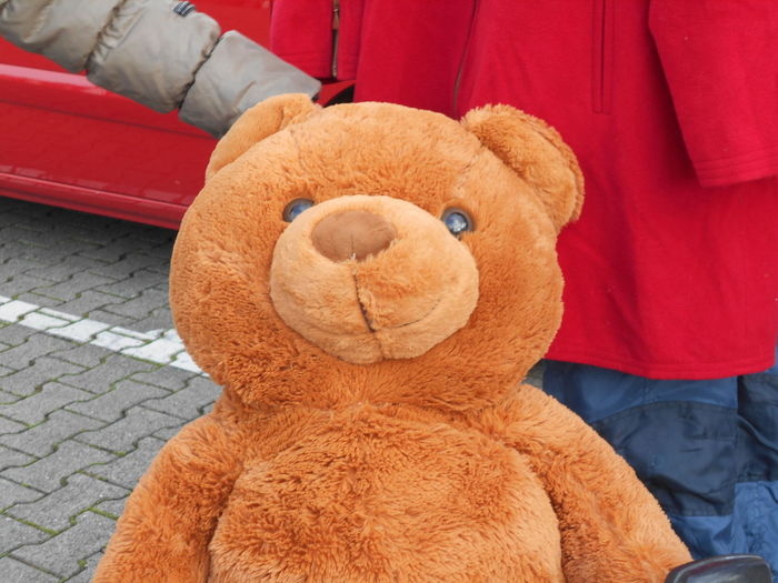 Charity And Relief Work Close-up Day No People Outdoors Stuffed Toy Teddy Bear