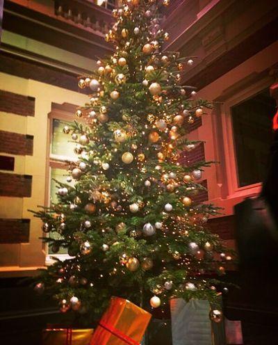 Merry Christmas🎁🎄❄️ Christmas Tree Celebration Tree Tradition Illuminated Christmas Lights Christmas Ornament カメラ好きな人と繋がりたい Iamsterdam Netherlands ❤ 愛アムステルダム 1225 大切な人と過ごす めりくり Merry Christmas