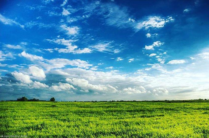 Поле в Гурьевске поле Windows Природа красота Russia Россия Nature небо Sky Clouds калининград Kaliningrad Kaliningradru пвк Instakld Kaliningradium Welovekaliningrad Hellokld