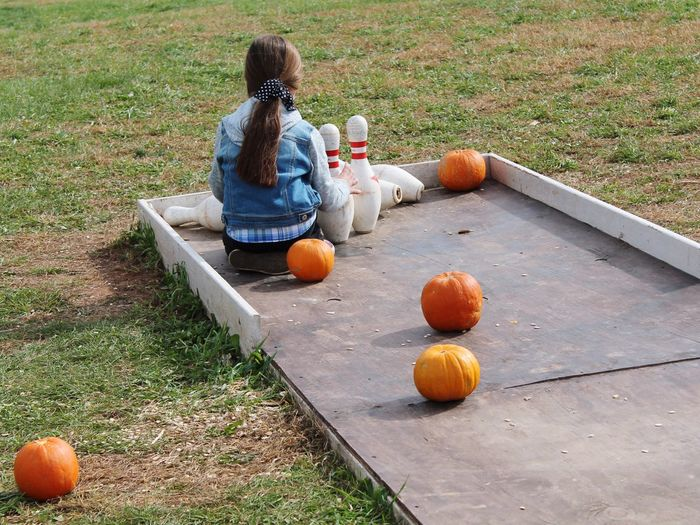 Pumpkin Halloween Orange Color Autumn Sitting Childhood Child Jack O' Lantern Food And Drink Children Only People Day Outdoors Candid Fruit Girls Two People Grass Togetherness