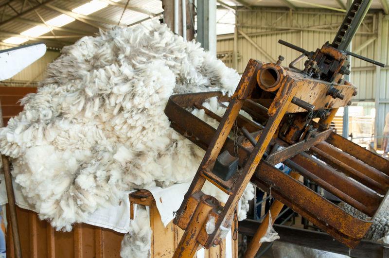 Wool Press Press Wool Press Farming Merino Shearing Sheep Sheepskin Wool