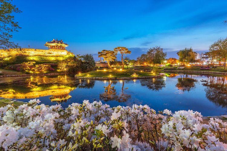 Suwon Hwaseong Fortress Suwon City Night Landscape Night View Nightscape Sony A7R