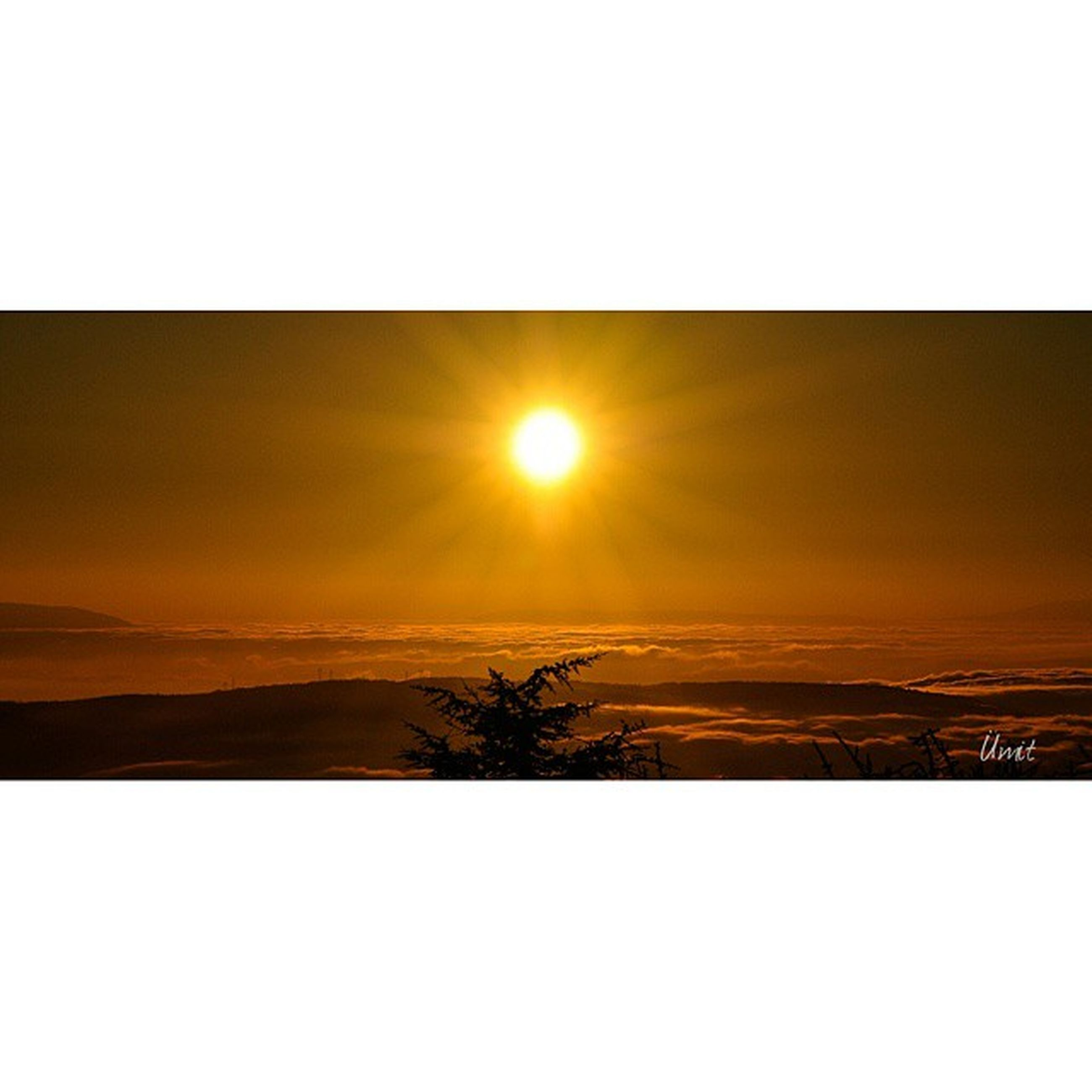 sunset, transfer print, sun, scenics, sky, tranquil scene, auto post production filter, beauty in nature, tranquility, silhouette, orange color, nature, copy space, sunlight, idyllic, reflection, water, landscape, clear sky, tree