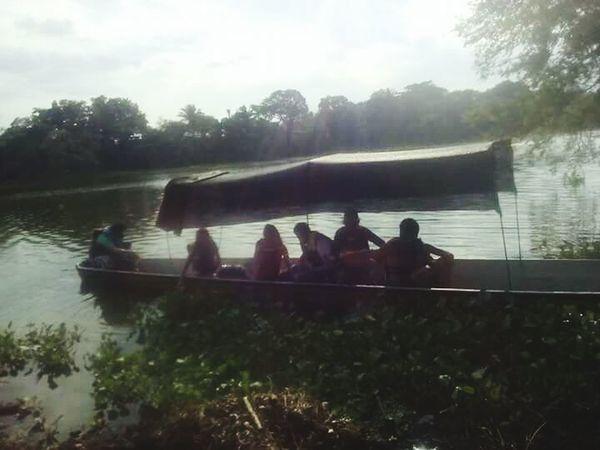 Bote Remar Lago Atardecer Cansados Arboles , Naturaleza Arboles