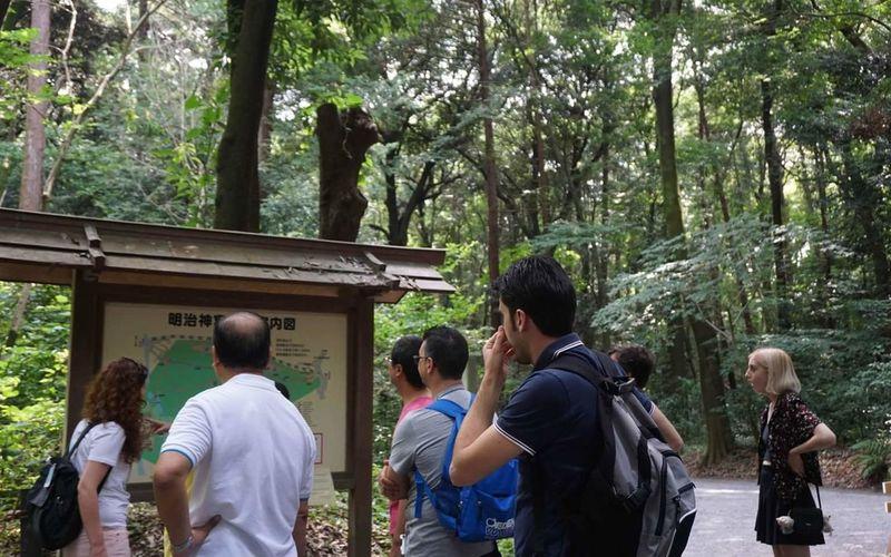 Nature Forest Outdoors Trees People Togetherness Enjoyment Adventure Japan EyeEmNewHere The Photojournalist - 2017 EyeEm Awards The Great Outdoors - 2017 EyeEm Awards EyeEm Best Shots