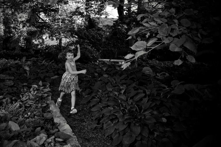 Visual Journal June 2018 Sunken Gardens Lincoln, Nebraska A Day In The Life Always Making Photographs Camera Work EyeEm Best Shots Getty Images Kids Playing Photo Essay Sunken Gardens Visual Journal B&w Beautiful Woman Casual Clothing Child Day Flower Fujifilm_xseries Full Length Gardens Growth Innocence Kidsphotography Leaf Leisure Activity Lifestyles Little Girl Long Form Storytelling Monochrome Nature One Person Outdoors Photo Diary Plant Plant Part Practicing Photography Real People S.ramos June 2018 Schwarzweiß Standing Tree Women Young Adult