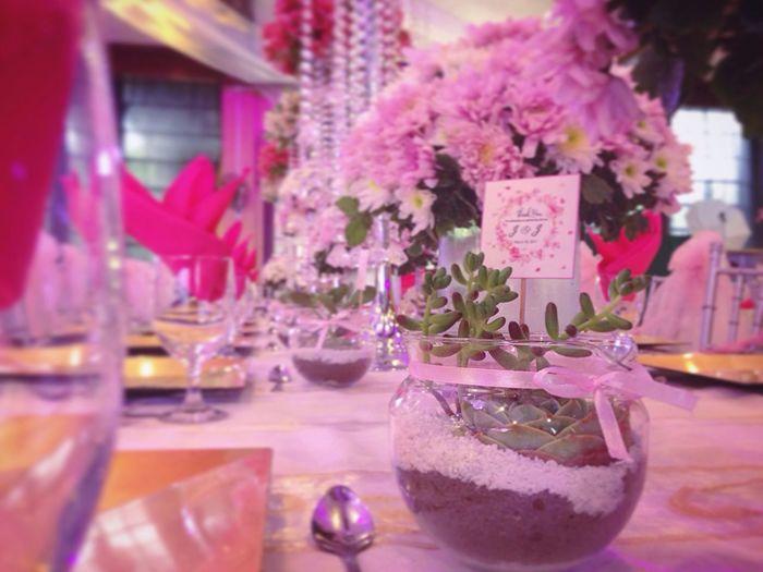 Millennial Pink Konseptosouvenirs (null)Wedding Weddingfavours Pink First Eyeem Photo Millennial Pink