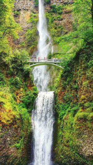 My Smartphone Life Beautiful Nature Beautiful Waterfall EyeCandy  Multnomah Falls  Galaxynote3 Nature Portland, OR