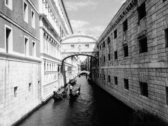 Taking Photos Venice, Italy The Tourist The Architect - 2017 EyeEm Awards