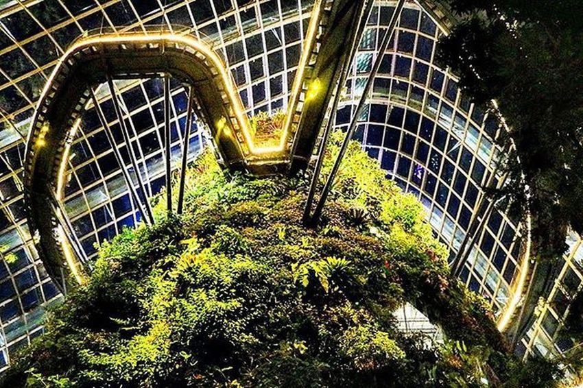 Cloud forest, Gardens by the Bay in Singapore CloudForest Singapore Gardensbythebay Superhubs_souls Instagood