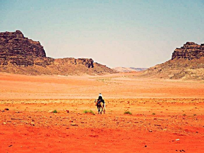 Capturing Freedom Desert Colors Paceful Jordan Traveling Travel