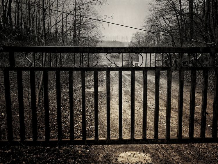 Betterlandscapes Spooky Düster Horror In Nature Darkness Dark Wintertime Winter Landscape Fog Close-up Textured  Rough Cold Temperature Cold The Great Outdoors - 2018 EyeEm Awards The Architect - 2018 EyeEm Awards Weather Wrought Iron Foggy Gate
