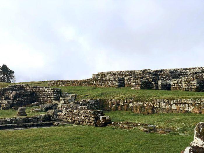 The Hadrian's