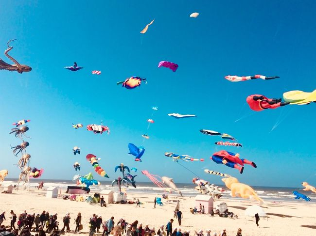 Kite festival. Berck Plage Kite Festival Kite Childhood Sky Large Group Of People Beach Group Of People Crowd Nature Flying Sky Large Group Of People Beach Group Of People Crowd Nature Flying Land Sea Real People Day Blue Sand Leisure Activity Sunlight Holiday Outdoors