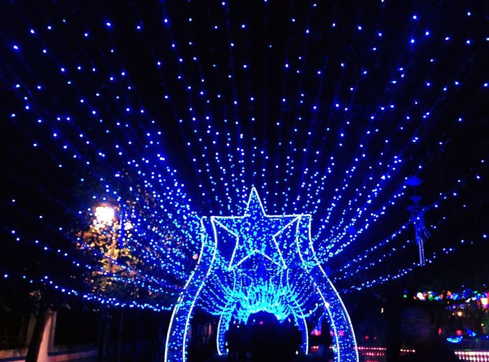 The lighting exhibition of The lantern festival in Kunming.