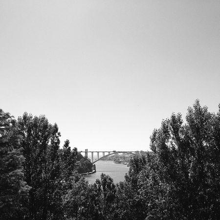 #oporto #porto #igers #igers_porto #palaciodecristal #jardinspalaciodecristal #pontedaarrabida #riodouro #river #fozriodouro #portugal #portugaligers #bnw_portugal #igers_porto_bw1 #iphone5 #iphonesia #iphoneonly #iphonephotography #instagood #instagram # Palaciodecristal Igers River Instagood Instadaily Porto Pictureoftheday Instalove Photography Portugaligers Portugal Igers_porto Iphoneonly Bnw_portugal Photooftheday Igers_porto_bw1 Iphonesia Iphonephotography Instagram Riodouro Pontedaarrabida IPhone5 Oporto Jardinspalaciodecristal Instamood Fozriodouro