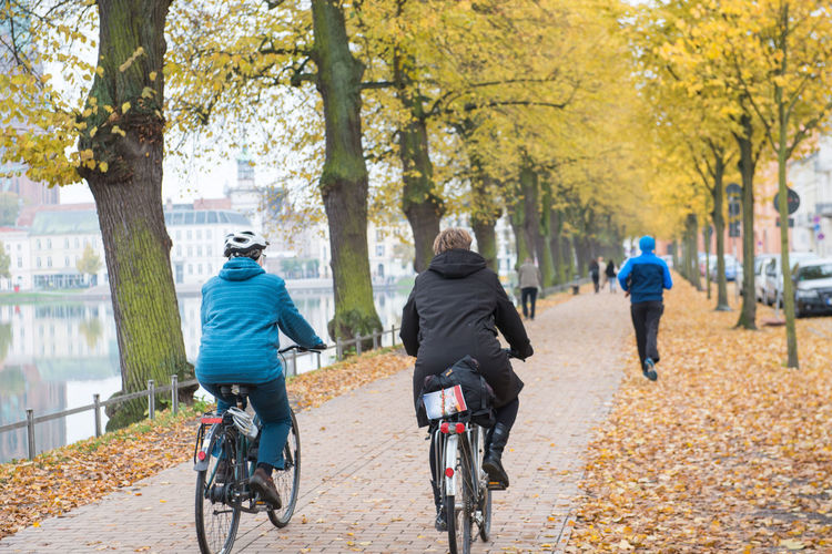 Riding on bike in autumn Tree Rear View Bicycle Autumn Transportation Full Length Sport Men Plant on the move Motion Nature Males  Adult People Cycling Change Day Activity Incidental People Outdoors Riding Treelined
