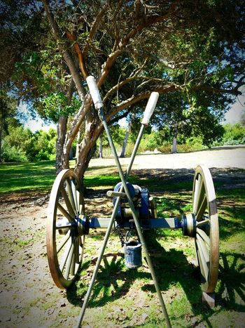 Wheel Tree Sunlight Shadow Field Tree Trunk Day Nature Green Color Outdoors Park Tranquility No People Canon Civil War Re-enactments Civil War History